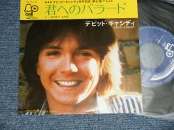 "Photo1: DAVID CASSIDY デビッド・キャシディ - A) IF I DIDN'T CARE 君へのバラード  B) FROZEN NOSES 雪の世界 (MINT-/MINT-)  / 1974 JAPAN ORIGINAL Used 7"" Single"