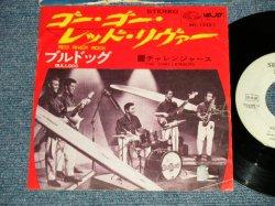 "Photo1: The CHALLENGERS ザ・チャレンジャーズ - A) RED RIVER ROCK ゴー・ゴー・レッド・リヴァー  B) BULLDOG ブルドッグ (Ex/Ex++ TOL) / 1966 JAPAN ORIGINAL ""WHITE LABEL PROMO""  Used 7""Single"