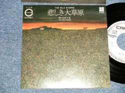 """Photo1: THE MATANGO ザ・マタンゴ - A) THE WILD STEPPE 悲しき大草原  B) THESE ARE NOT MY PEOPLE 見知らぬ人々 (MINT-/MINT-) / 1971 JAPAN ORIGINAL """"WHITE LABEL PROMO"""" Used 7""""45 rpm Single"""