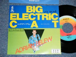 "Photo1: ADRIAN BELEW  エイドリアン・ブリュー - A) BIG ELECTRIC CAT  B) THE FINAL RHINO (Ex+/MINT- STOFC, WOFC,PROMO STAMP OL) / 1982 JAPAN ORIGINAL ""PROMO"" Used 7""45 rpm Single"