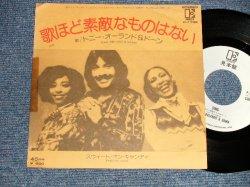 "Photo1: TONY ORLAND & DAWN トニー・オーランド&ドーン - A) SING 歌ほど素敵なものはない B( SWEET ON CANDY スィート・オン・キャンディ (Ex+/MINT- TAPE, BEND) / 1977 JAPAN ORIGINAL ""WHITE LABEL PROMO"" Used 7""Single"