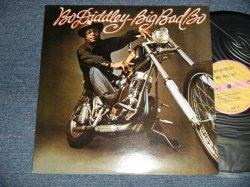 Photo1: BO DIDDLEY  ボー・ディドリー - BIG BAD BO (Ex+++/MINT- EDSP) / 1996 JAPAN REISSUE Used LP